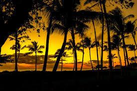 ハワイ.jpg